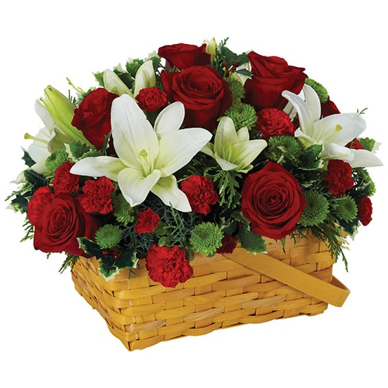 Holiday greetings basket of flowers (BF203-11KL)